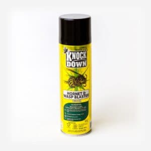 Knock Down Kill Wasps and Hornets KD131D