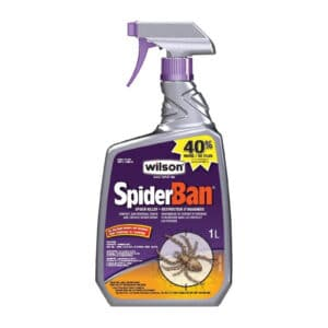 Spiderban – Insecticide against spiders (1L)